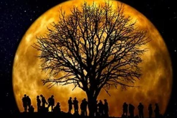 A group of people silhouetted together around a tree against a full, golden moon.